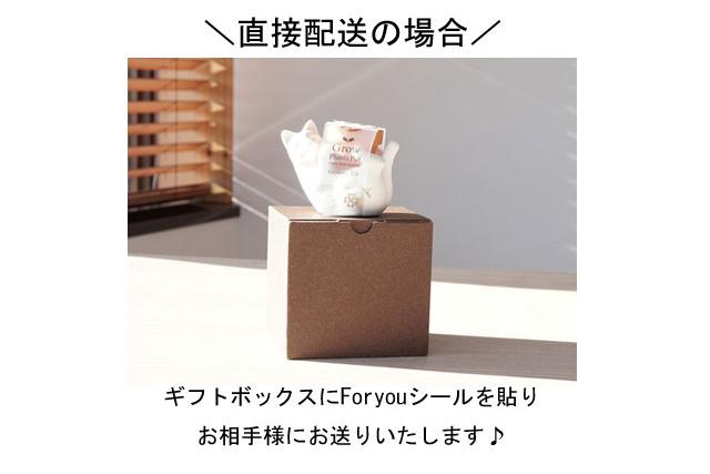 栽培セットアニマルの直送梱包