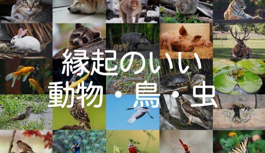 【縁起のいい動物・鳥・虫】祈願やお祝いに動物モチーフのギフトを贈ろう!